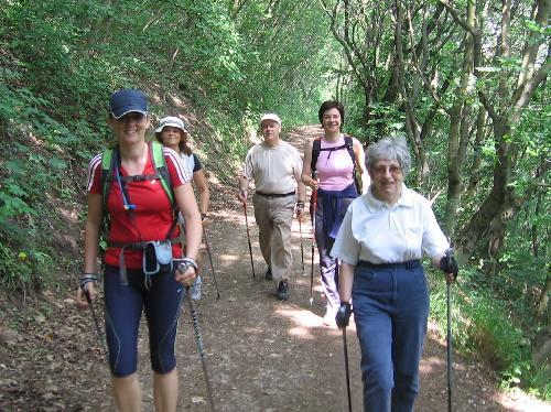 magas vérnyomás nordic walking diétás ételek magas vérnyomás esetén